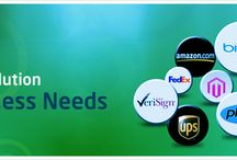Web Designing And Development Services / Best web development Services for your Business