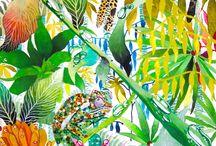 Rainforest ideas and inspiration