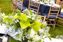 Tablescapes / by Camille Beaubien