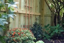 Garden / All things in the garden.