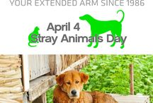 4 April World Stray Animals Day / April 4 is the day to give special attention to the 600.000.000 stray animals in the world. Dogs and cats should have a home. To support please join the worldwide organizaton: http://www.strayanimalsday.org/    As marmassistance family, we will always show support for stray animals.  http://marmassistance.com/