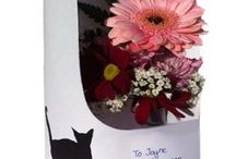 Get well soon floral cards