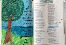 Bible Journaling & study