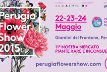 Eventi in Perugia