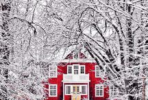 Winter Wonderland / Everything you need to have a great Winter.