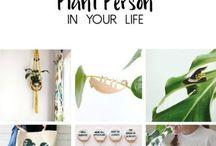 növénykék / plants