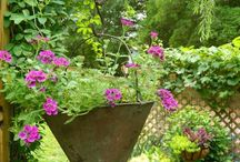 Galvanized Gardens