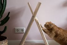 Ideen für Katzen