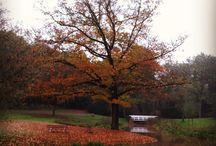 Goffertpark in Nijmegen / Sfeerbeelden van het #Goffertpark door Actie Schoon Goffertpark