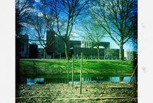De Stadsplantage (Delft)