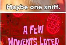 Memes / Memes