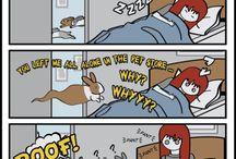 Kaninchen Comic