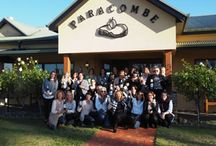 Be Connected Day 2016 / The Adelaide behind closed doors women enjoyed our Annual Be Connected Day in May 2016.  Our version of a golf day, we headed to Paracombe Wines for an amazing day.