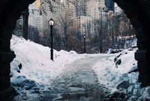 NY / by Joe Taylor