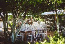 חתונה טבעונית בפרדס / הבאר של סבא  צילום: אמיר חזן