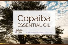 copaiba Oil for pain