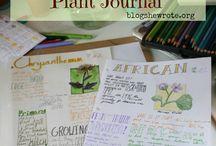 Journal - Plants