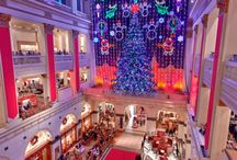 Holiday Lights and Sights 2015 / by MetroKids Magazine