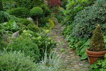 Trädgårdar