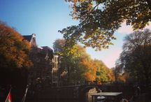 Autumn - AMSTERDAM / The autumn - or fall - months are some of the most beautiful in which to visit Amsterdam, when golden leaves fill the trees and line the cobbled streets, the nights begin to draw in and the cultural season is in full swing!