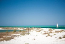 Florida - My Dream
