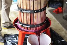Wine making could be fun!