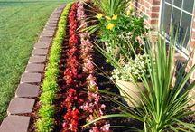 Gardening / Gardening stuff