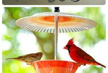 Cup bird feeder