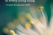 Prophet Muhammed (SAW)