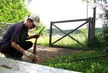 Diario di un amore / Foto realizzate nel mio Paradiso Verde, il luogo che amo, la terra che vorrei rendere viva e fertile e in cui trascorrere la mia vita.