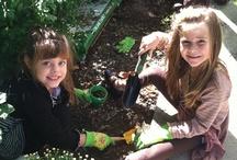 Little Sprouts/Gardening / http://www.languageandenrichmentcenter.com/Language_and_Enrichment_Center/Welcome.html
