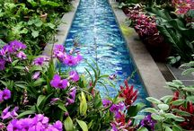 flower-pool-green
