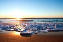 Beach / by Deborah Rose