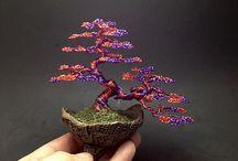 bonsaj stromcek
