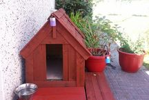 Dog kennels made out of pallets