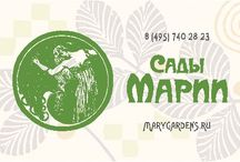 Удивительный образ Вашего сада / растения, цветы, деревья, кустарники, саженцы, идеи для сада,ландшафтный дизайн, планировка сада
