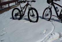 biciclette / biciclette e ciclisti