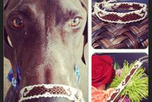 Friendship Bracelets  / DIY , bracelets ,  / by Sonia Barragan