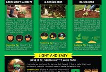 Flowers and Gardens / Gardening and flower planting and growing tips.