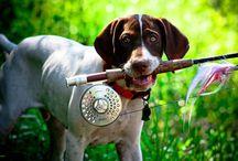 Huntering