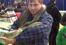 snakes / big snakes