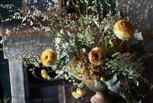 floral arrangements  / by Christin Meadows