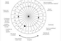 cicle llunar