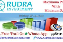 ARTICLE   Rudra Investment Financial Research