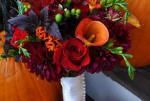 Fall Weddings / Everything you need to plan the fall wedding of your dreams!