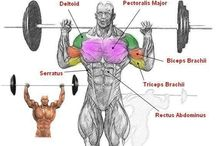 Shoulders Workouts