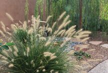 Client: Mahfouz / Converting grass into a garden with a lot of curb appeal.