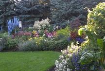 Carole's garden ideas / by Carole VandenDolder