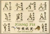Kung fu form