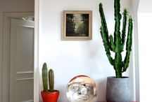 The Bright Indoors / Incorporating Bright Colors Into Your Home. Bring a little sunshine to your winter. / by Lenox
